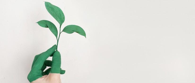 ética y sostenibilidad jornadas